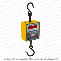 Mini Hanging Scale H-602